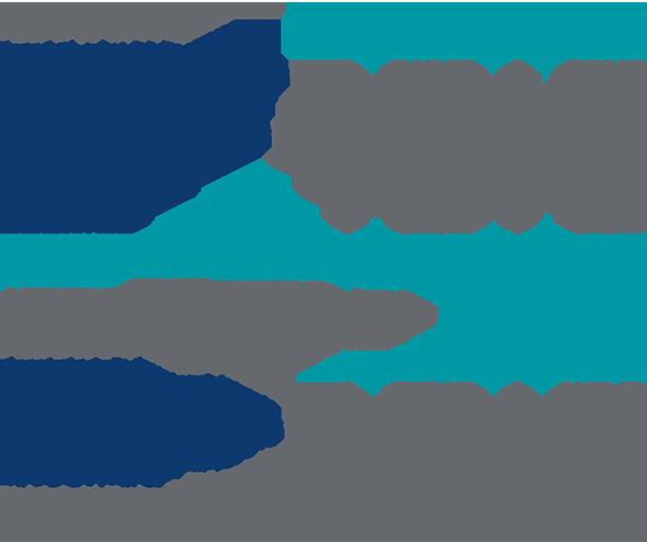 Asset Activity 2019